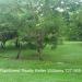 Lot on Belize River Unitedville