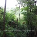 Belize Residential Lots in Forest Reserve3