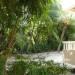 Belize-Spacious-Beachfront-Condo10