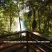 Belize-Luxury-Jungle-Resort-1