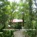 Belize-Luxury-Jungle-Resort-16