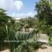Seafront-Boutique-Resort-in-Maya-Beach-50