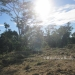 Belize Riverfront property for sale on 1.17 acres4