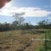Belize Riverfront property for sale on 1.17 acres7
