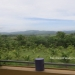 Exclusive 20 Acre Private Belize Property16