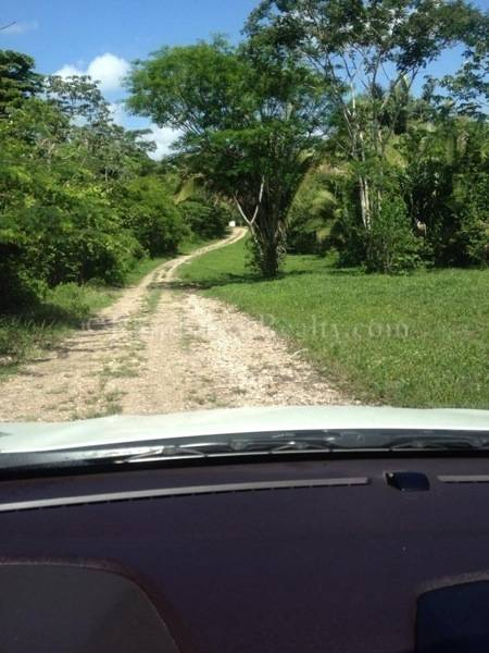 Five Acre Wood School: Belize Real Estate One And Five Acre Lots For Sale
