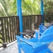 Belize-Eco-Jungle-Lodge-For-Sale10