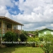 Belize-Jungle-Retreat-on-8-Acres-Teakettle23