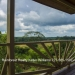 Belize-Jungle-Retreat-on-8-Acres-Teakettle26