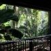 Belize-Bungalow-Rental-Jungle-Belize2