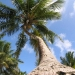 belize-island-resort-for-sale-rci-31