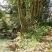 Belize-Fourteen-Acres-Toledo-District3