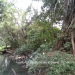 Belize-Fourteen-Acres-Toledo-District8