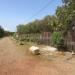 Fence Surfside Placenca Belize