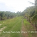 6 Acres Land Paslow Falls Cayo District10