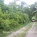 6 Acres Land Paslow Falls Cayo District3