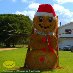 Christmas in Belize hay-man