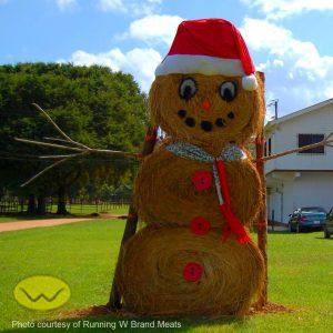 Christmas in Belize hay-man